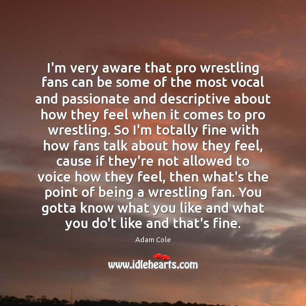 I'm very aware that pro wrestling fans can be some of the Image