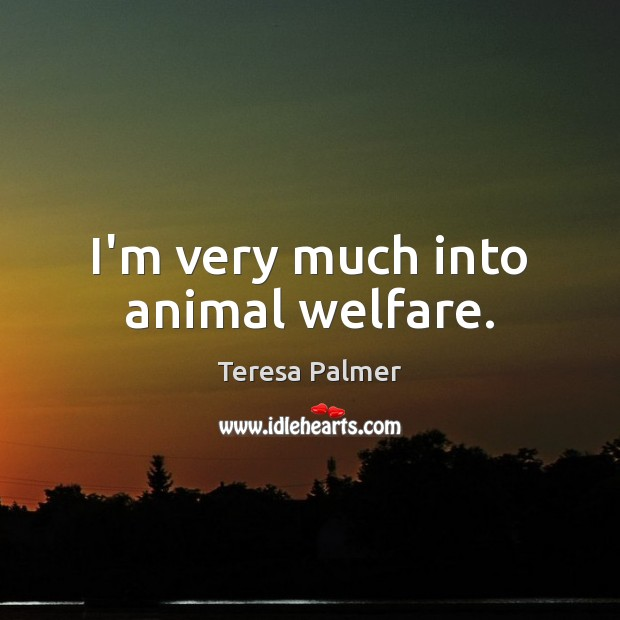 I'm very much into animal welfare. Image
