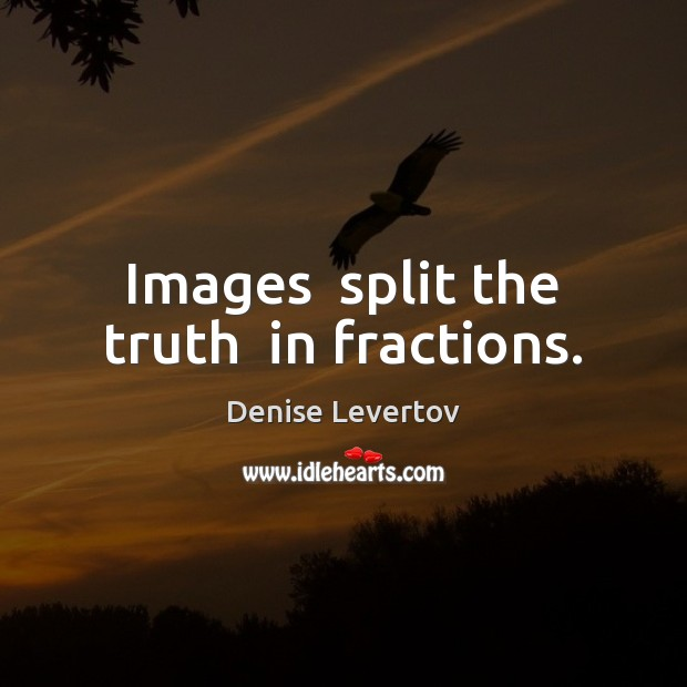 Images  split the truth  in fractions. Image