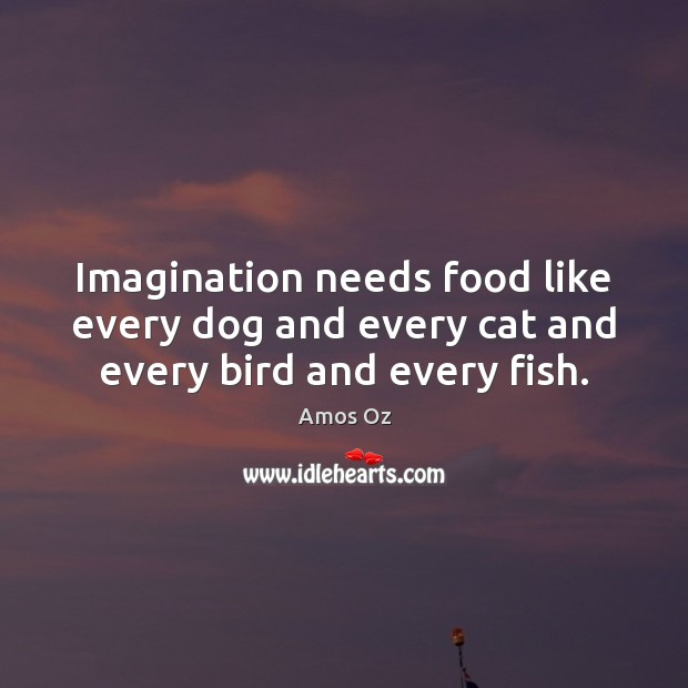 Image, Imagination needs food like every dog and every cat and every bird and every fish.