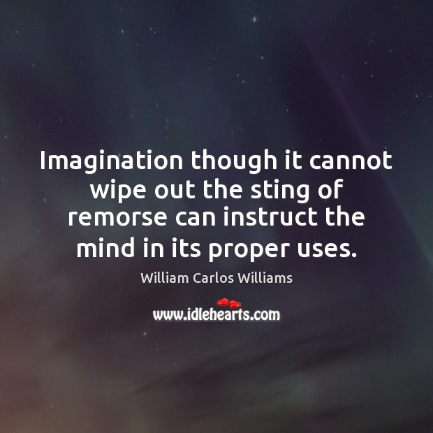 Imagination though it cannot wipe out the sting of remorse can instruct William Carlos Williams Picture Quote