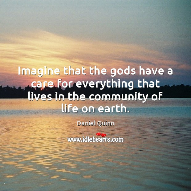 Imagine that the Gods have a care for everything that lives in Daniel Quinn Picture Quote