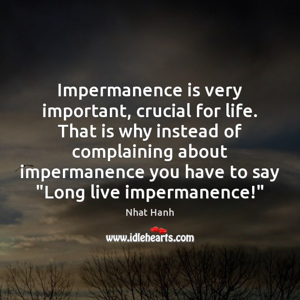 Image, Impermanence is very important, crucial for life. That is why instead of