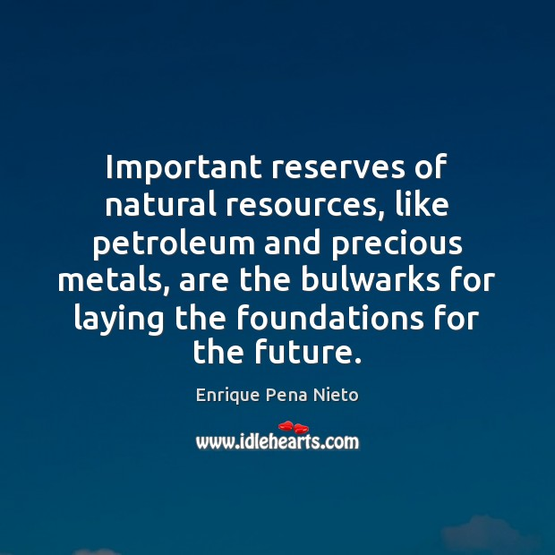 Important reserves of natural resources, like petroleum and precious metals, are the Image