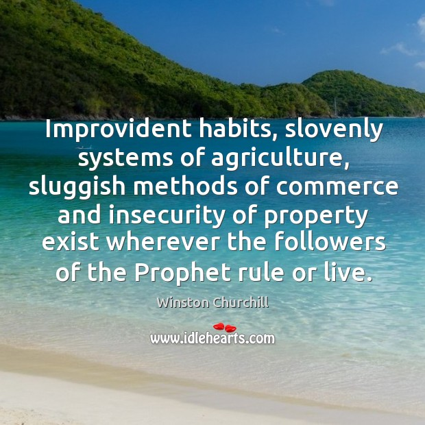 Improvident habits, slovenly systems of agriculture, sluggish methods of commerce and insecurity Image