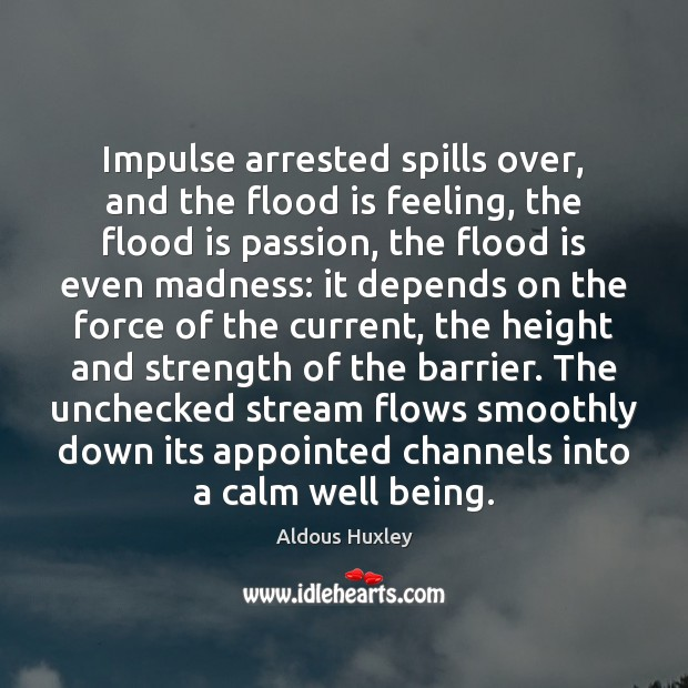 Image, Impulse arrested spills over, and the flood is feeling, the flood is