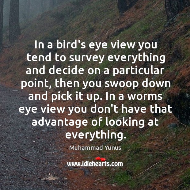 In a bird's eye view you tend to survey everything and decide Image