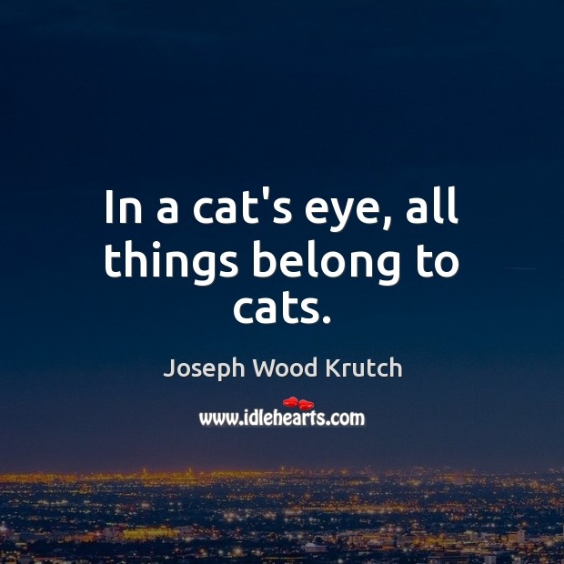 In a cat's eye, all things belong to cats. Joseph Wood Krutch Picture Quote