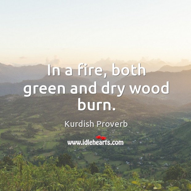 In a fire, both green and dry wood burn. Kurdish Proverbs Image