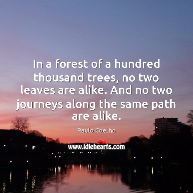 In a forest of a hundred thousand trees, no two leaves are Image