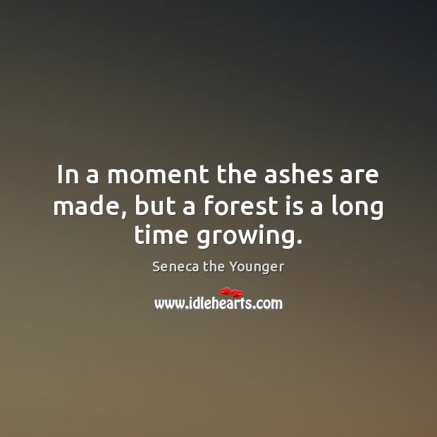 Image, In a moment the ashes are made, but a forest is a long time growing.