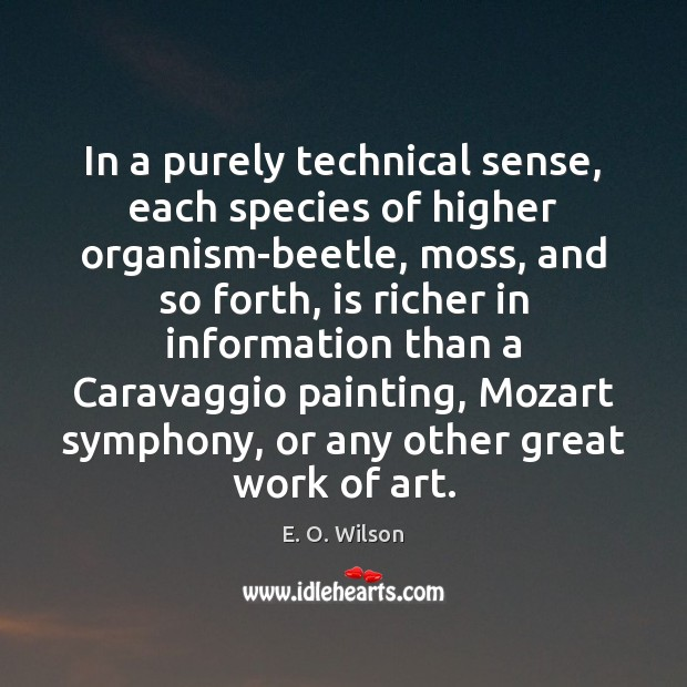 In a purely technical sense, each species of higher organism-beetle, moss, and E. O. Wilson Picture Quote