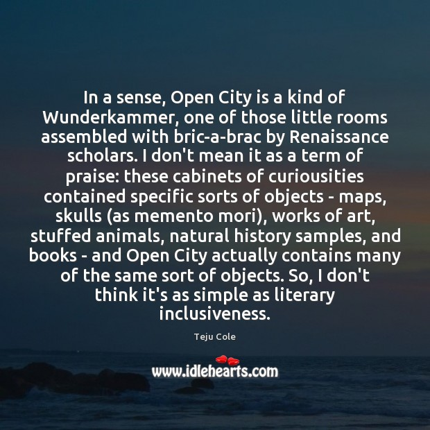 In a sense, Open City is a kind of Wunderkammer, one of Image