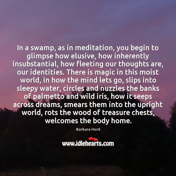 Image, In a swamp, as in meditation, you begin to glimpse how elusive,