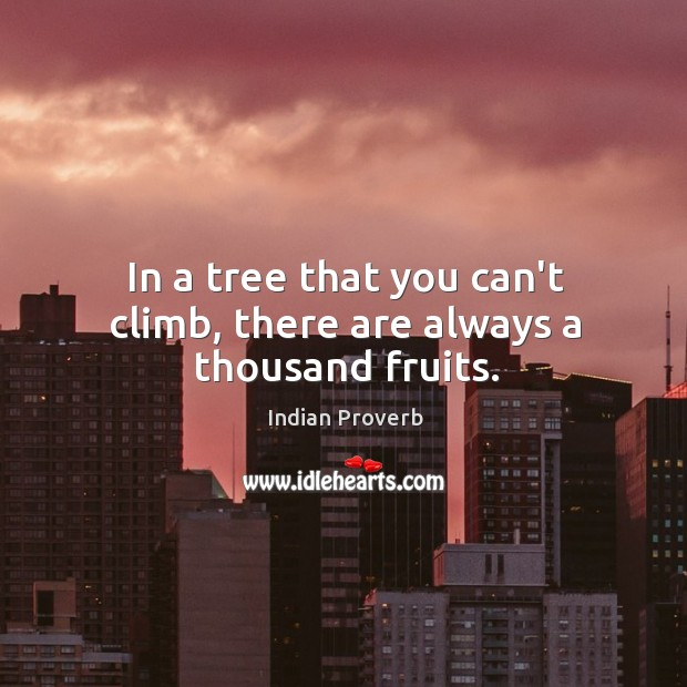 In a tree that you can't climb, there are always a thousand fruits. Image