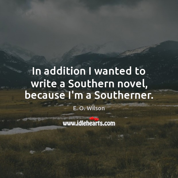 Image, In addition I wanted to write a Southern novel, because I'm a Southerner.