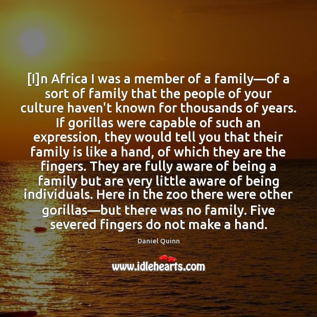 [I]n Africa I was a member of a family—of a Image