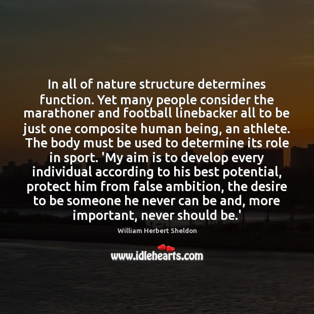 In all of nature structure determines function. Yet many people consider the Image