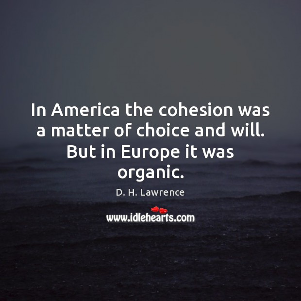 In America the cohesion was a matter of choice and will. But in Europe it was organic. D. H. Lawrence Picture Quote
