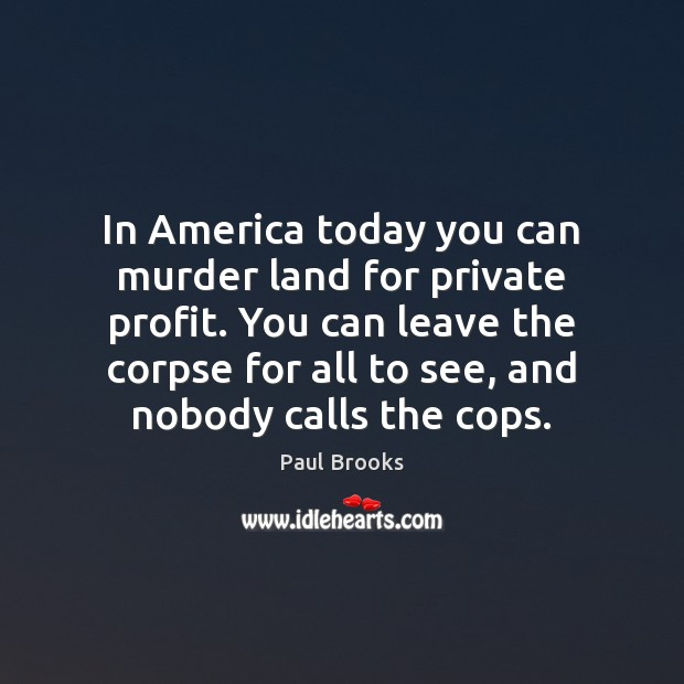 Image, In America today you can murder land for private profit. You can