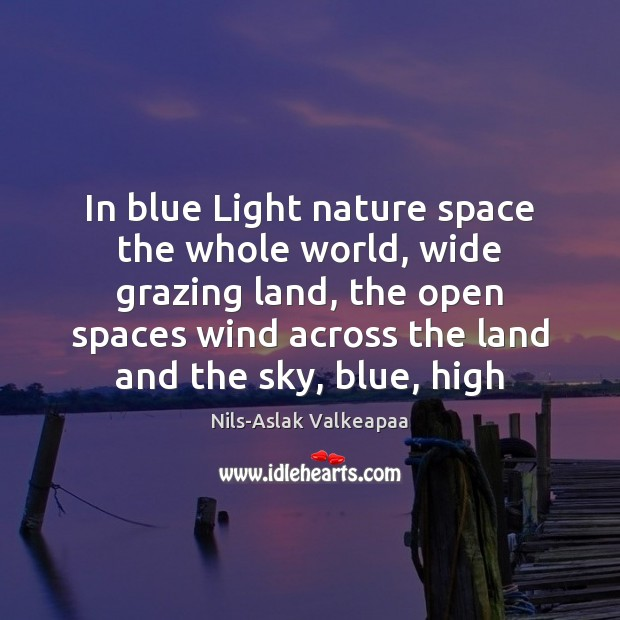 In blue Light nature space the whole world, wide grazing land, the Image