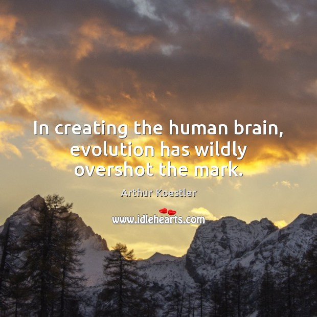 In creating the human brain, evolution has wildly overshot the mark. Image