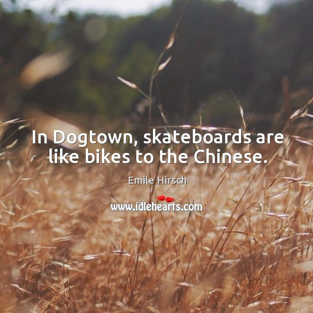 In dogtown, skateboards are like bikes to the chinese. Emile Hirsch Picture Quote