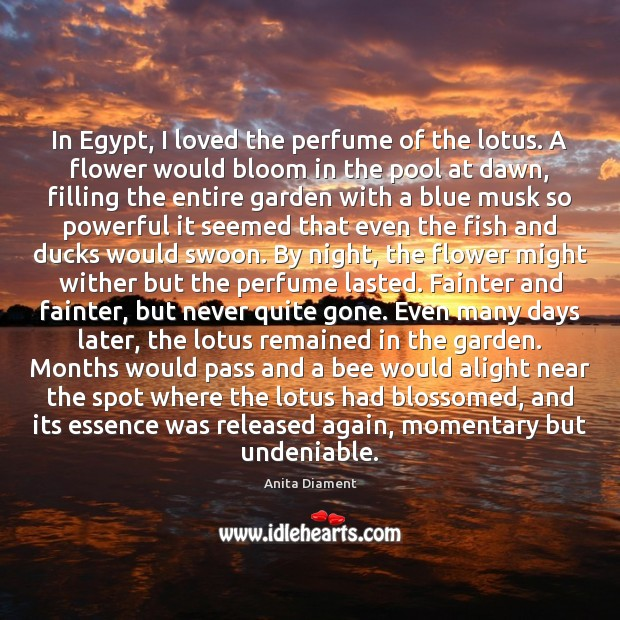 In Egypt, I loved the perfume of the lotus. A flower would Flowers Quotes Image