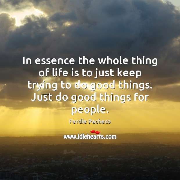 In essence the whole thing of life is to just keep trying Image
