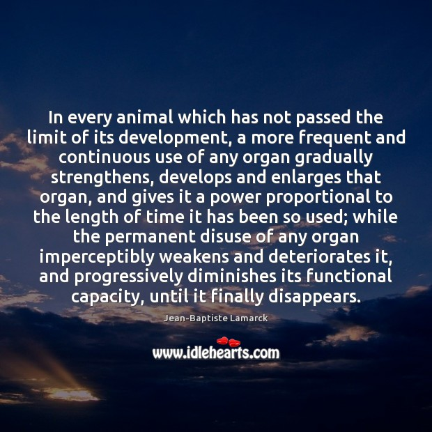 Image, In every animal which has not passed the limit of its development,