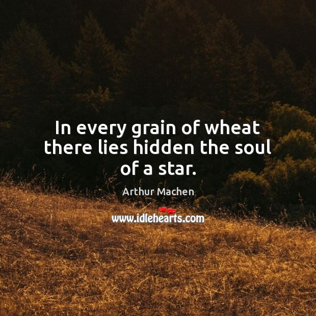 In every grain of wheat there lies hidden the soul of a star. Image