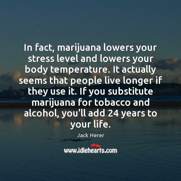 In fact, marijuana lowers your stress level and lowers your body temperature. Jack Herer Picture Quote