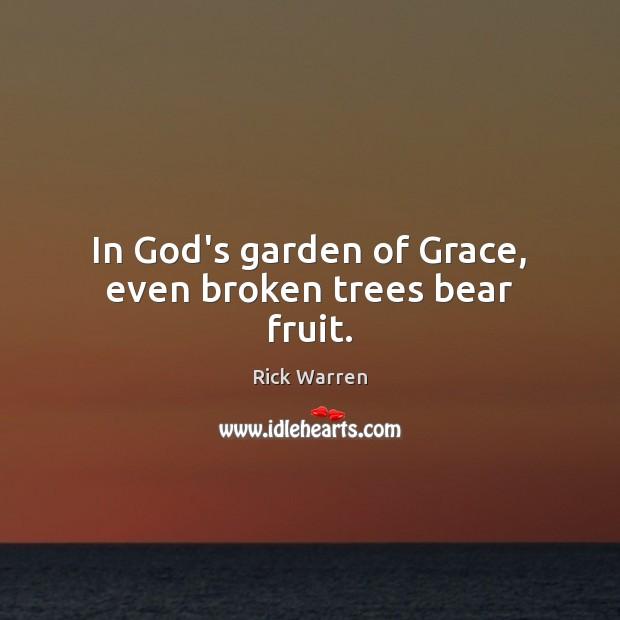 In God's garden of Grace, even broken trees bear fruit. Rick Warren Picture Quote