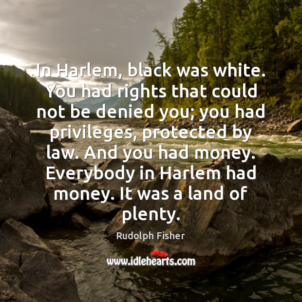 Image, In Harlem, black was white. You had rights that could not be
