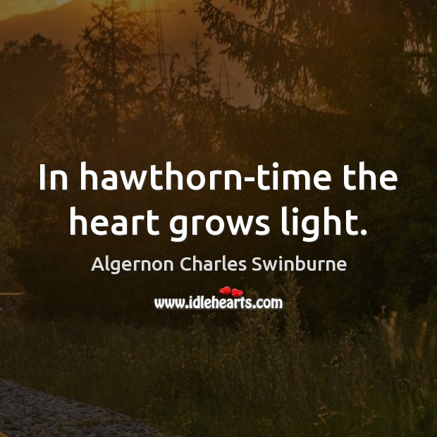 In hawthorn-time the heart grows light. Algernon Charles Swinburne Picture Quote