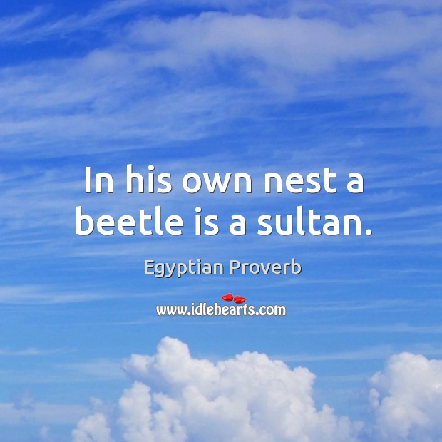 In his own nest a beetle is a sultan. Egyptian Proverbs Image