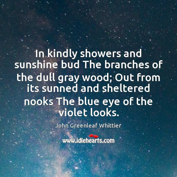 In kindly showers and sunshine bud The branches of the dull gray John Greenleaf Whittier Picture Quote