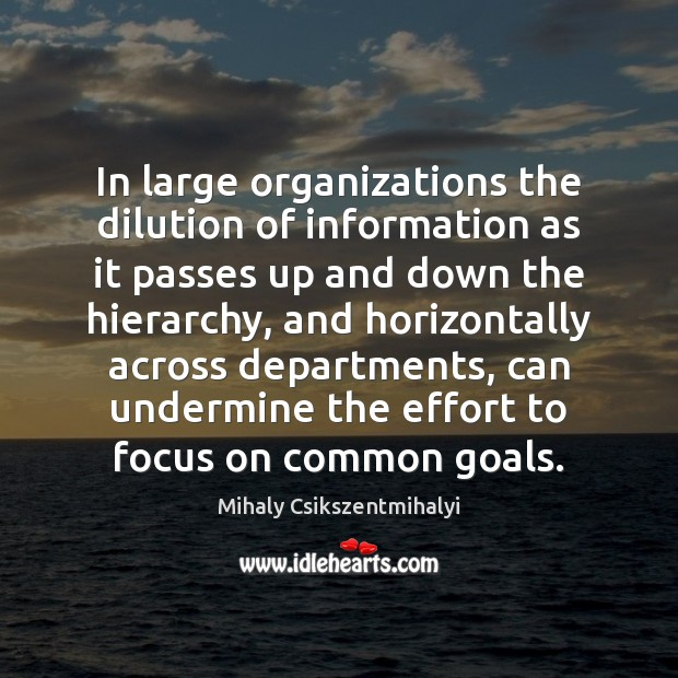 In large organizations the dilution of information as it passes up and Mihaly Csikszentmihalyi Picture Quote