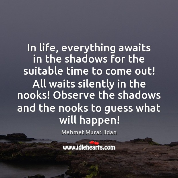 Image, In life, everything awaits in the shadows for the suitable time to