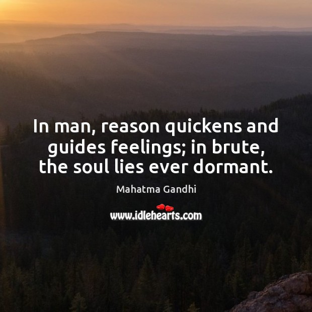 In man, reason quickens and guides feelings; in brute, the soul lies ever dormant. Image