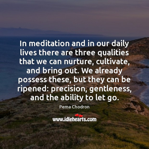 In meditation and in our daily lives there are three qualities that Image