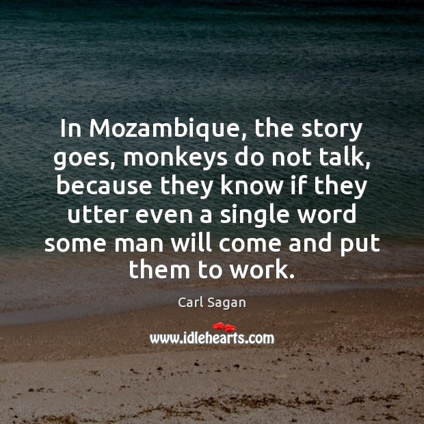 In Mozambique, the story goes, monkeys do not talk, because they know Image