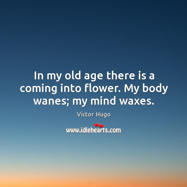 In my old age there is a coming into flower. My body wanes; my mind waxes. Image