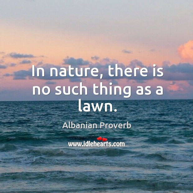 In nature, there is no such thing as a lawn. Albanian Proverbs Image