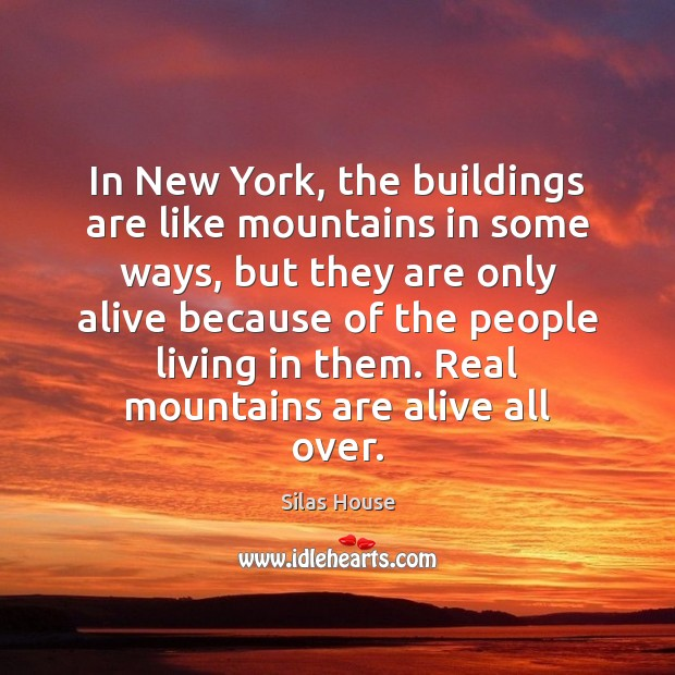 In New York, the buildings are like mountains in some ways, but Image