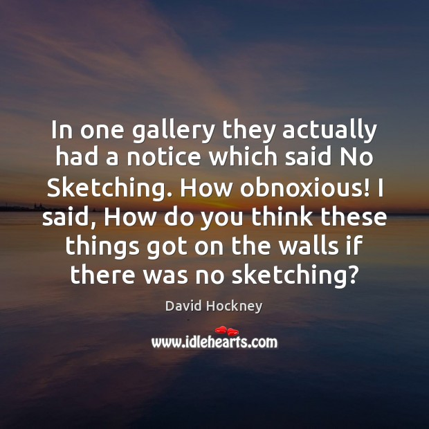 In one gallery they actually had a notice which said No Sketching. David Hockney Picture Quote