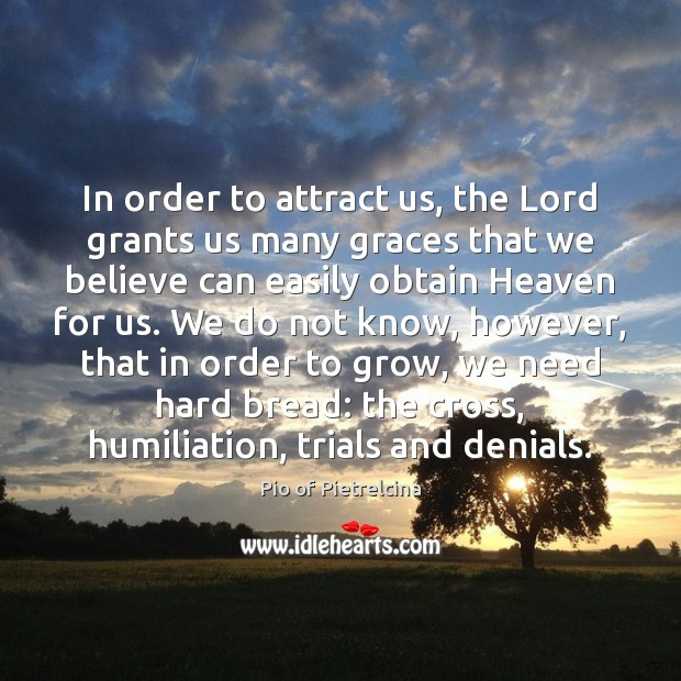 In order to attract us, the Lord grants us many graces that Pio of Pietrelcina Picture Quote