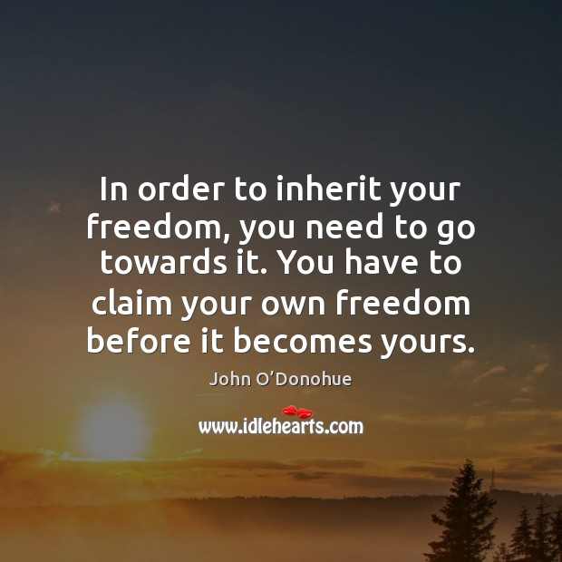 In order to inherit your freedom, you need to go towards it. John O'Donohue Picture Quote