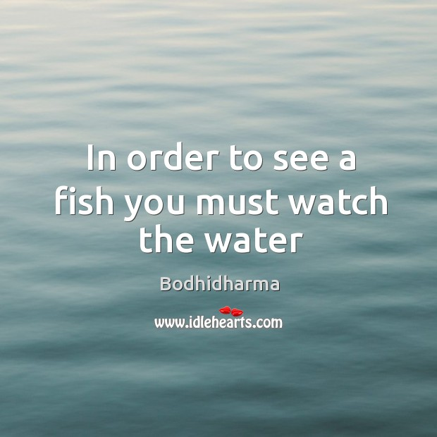 In order to see a fish you must watch the water Bodhidharma Picture Quote