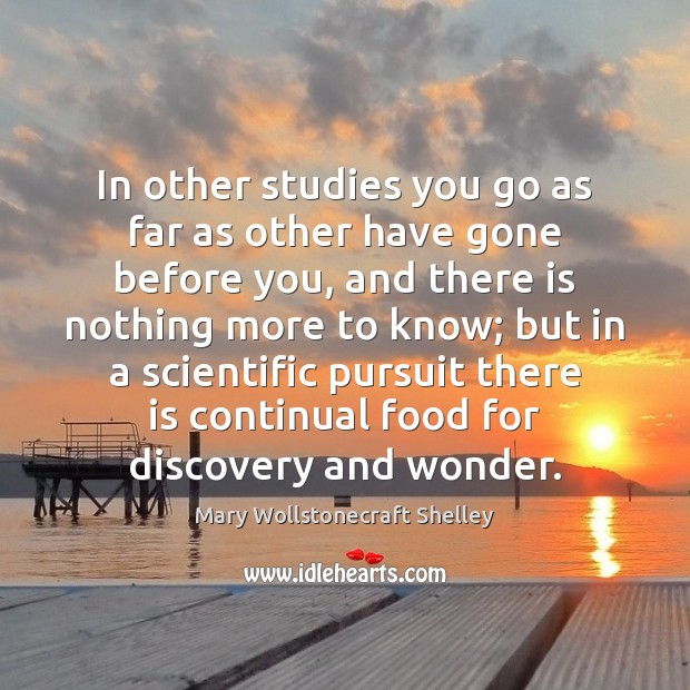 In other studies you go as far as other have gone before Mary Wollstonecraft Shelley Picture Quote